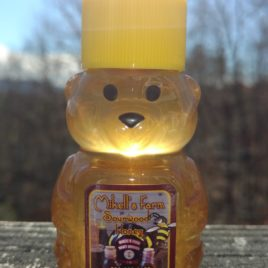 2 oz Raw Certified Sourwood Honey Plastic Honeybear